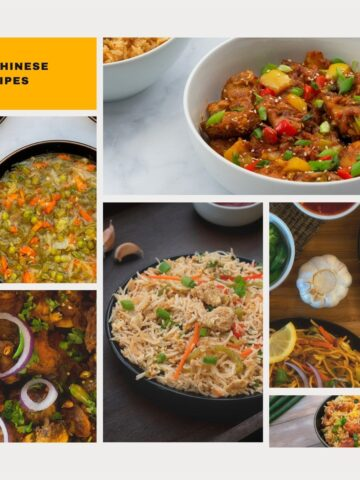 Easy and Best Indo Chinese Recipe and ideas